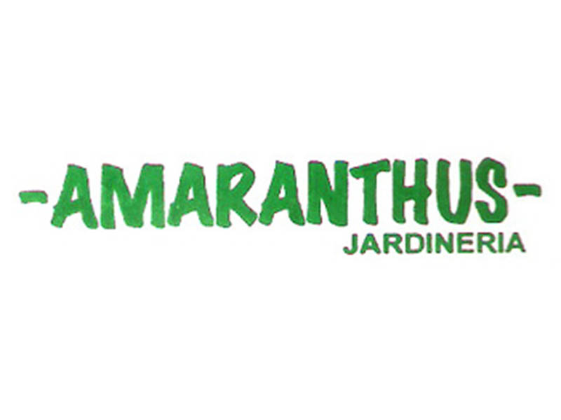 AMARANTHUS JARDINERIA
