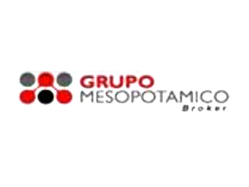 GRUPO MESOPOTAMICO SRL