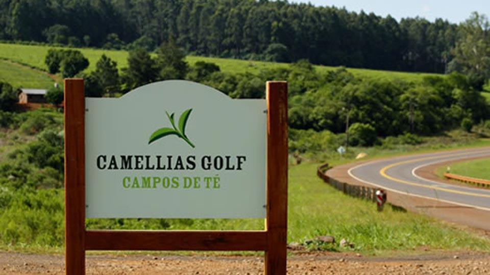 CAMELLIAS GOLF