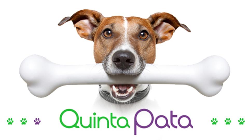 QUINTA PATA - TIENDA DE MASCOTAS II